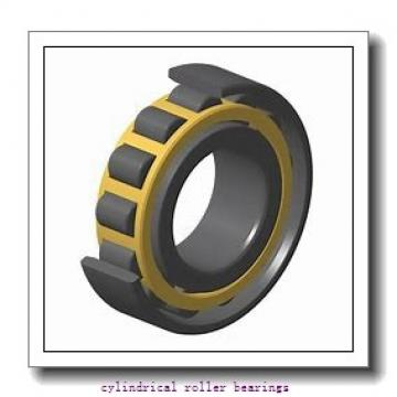 95 mm x 145 mm x 24 mm  FAG NU1019-M1 Cylindrical Roller Bearings