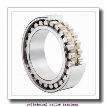 35 mm x 80 mm x 21 mm  FAG NJ307-E-TVP2 Cylindrical Roller Bearings