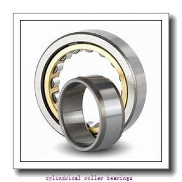 55 mm x 120 mm x 43 mm  FAG NUP2311-E-TVP2 Cylindrical Roller Bearings