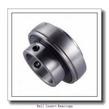 INA GAY40-NPP-B Ball Insert Bearings