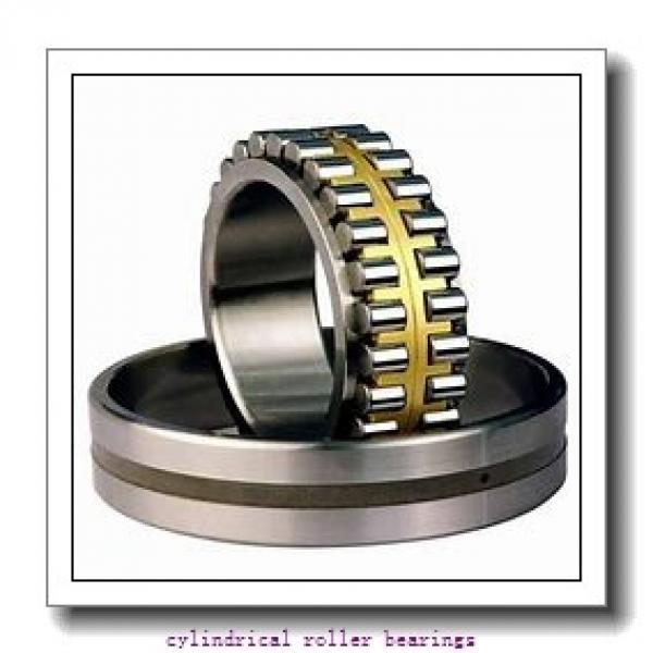 FAG NJ317-E-M1-F1-T51F Cylindrical Roller Bearings #2 image
