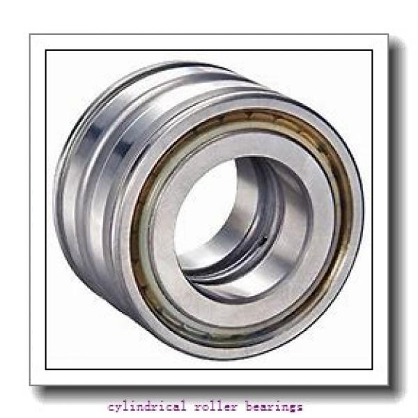 FAG NJ317-E-M1-F1-T51F Cylindrical Roller Bearings #1 image
